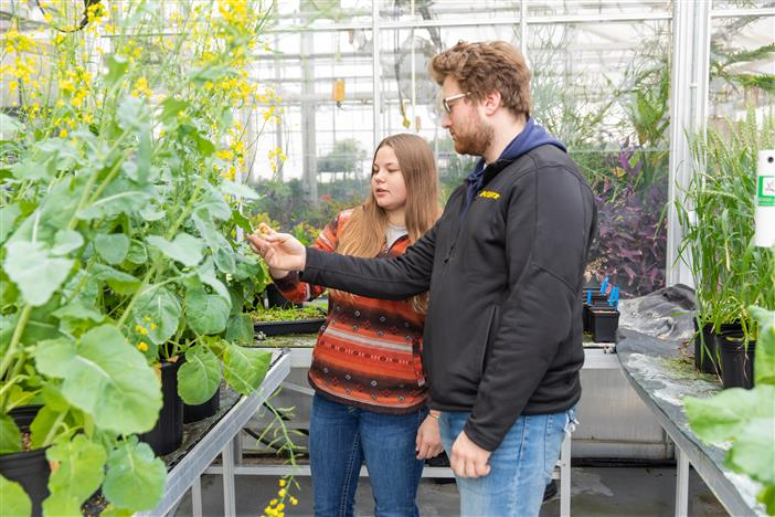 BSC receives USDA funds to support agriculture workforce training - image