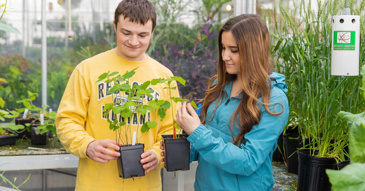 CHS Foundation grant makes BSC Ag active learning center a reality