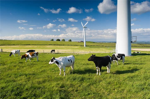 With Five States In '20 Percent And Up' Club, Wind Thrives In Rural U.S.